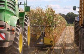 Spannend of alle mais voor oktober kan worden gehakseld