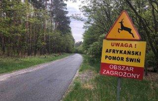 Poolse+Senaat+versoepelt+dierenwet