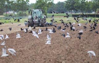 Onderzoek WUR: landbouwgrond Regio Foodvalley blijft schaars