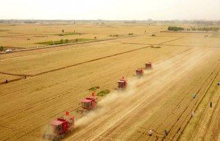Chinese+zorgen+over+voedselzekerheid+door+overstromingen