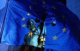 Europees hof keurt aankoopsubsidie natuurgebied af