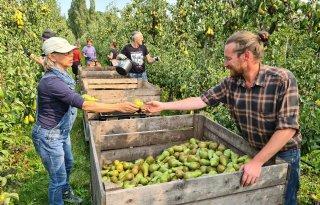 Voedselbosboomgaard als rendabel alternatief