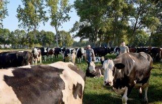 Melkveehouder Combee onderneemt in balans met omgeving
