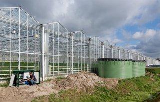 Drie collectieven van glastuinders pakken waterzuivering op