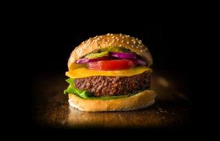 Injectie van 55 miljoen euro voor kweekvleesburger