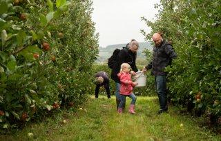 Fruittelers uit Vaals weten klanten te binden met plukdagen
