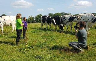 Vlogger+Sue+bezoekt+veehouder+voor+LimburgGezondTV