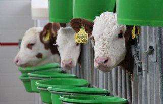 Aanhoudend+slecht+humeur+in+Duitse+landbouwsector