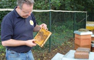 Indringers+effectief+verwijderd+uit+bijenbroed