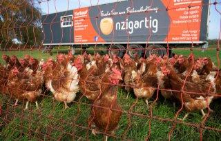 Duits+dierenwelzijnsplan+kost+5+cent+per+maaltijd