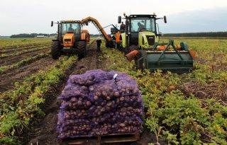1+miljoen+euro+voor+landbouw+in+Veenkoloni%C3%ABn