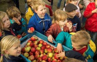Limburgse+kinderen+gezonder+door+lunch%2D+en+beweegproject