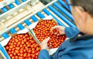 Recordopbrengst+groenten+en+fruit+voor+voedselbanken