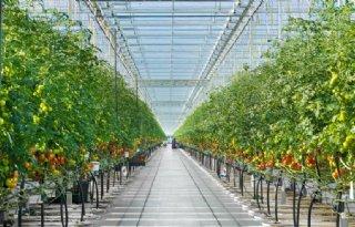 Nederlandse+landbouwers+ontdekken+Kazachstan