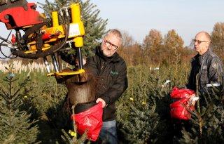 Coronacrisis leidt tot grotere belangstelling kerstboom