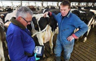 Melkveehouder+Anne+Kalsbeek%3A+%27Scannen+koeien+betrouwbaar+en+snel%27