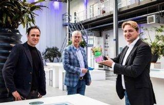 Kwekerij Barendse Freesia winnaar Greenovation Award 2020