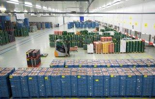 Corona+stuwt+export+glasgroenten+binnen+EU