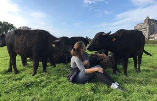 Jonge+boeren+gek+op+waterbuffels