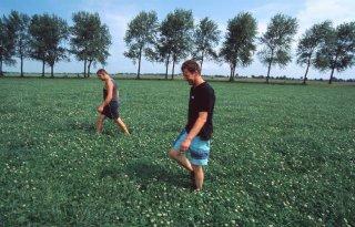 Bionext wil keuzevak biologische landbouw behouden