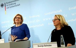 Duitse ministers bakkeleien over vleestaks