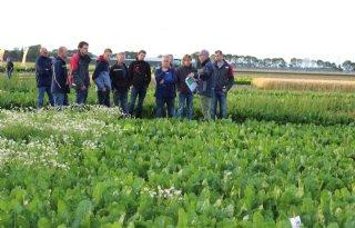 Nieuwe+naam+voor+Proeftuin+Zwaagdijk+en+Demokwekerij+Westland