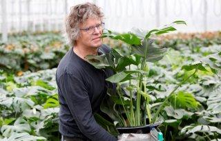 GroWplant+speelt+met+wisselend+assortiment+in+op+vraag