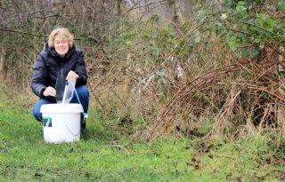 Agrarisch+ondernemers+tellen+vlinders+in+Friesland