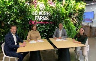 Delphy lanceert Team Vertical Farming met onderzoekscellen