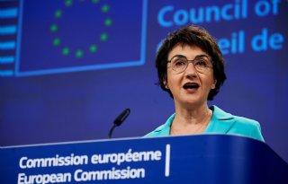 EU-triloog over ecoregelingen in nieuw GLB komt op gang