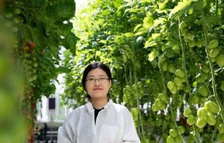 Bedrijvencluster positioneert Nederlandse tuinbouw in China