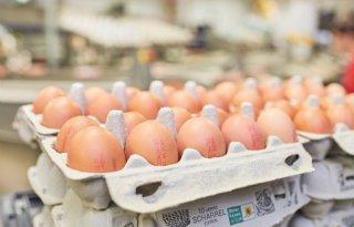 'Oude kaartjes' bij Beter Leven-ei zorgen voor irritatie