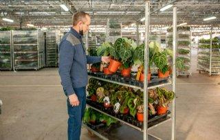 Brancheopleiding glastuinbouw is praktijkgericht