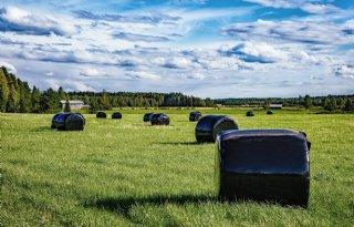 RaniPlast+introduceert+duurzamere+balenwikkelfolie