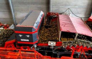 Downs+sorteert+optisch+100+ton+aardappelen+per+uur