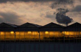 Energieprijs drukt productie glastuinbouw