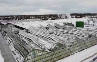 Kassen bezwijken onder de sneeuw