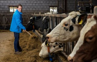 Melkveehouder De Groot verbouwt voer zoveel mogelijk zelf