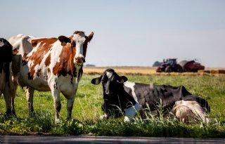 Politiek is voorlopig niet klaar met de landbouw