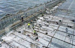 Schade+winterweer+aan+kassen+40+miljoen+euro