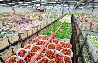 FloraHolland wijzigt aanpak milieuregistratie en -certificering