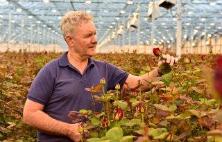 Wietse Lek: \'Bewustzijn over belang duurzame sierteeltproducten groeit\'