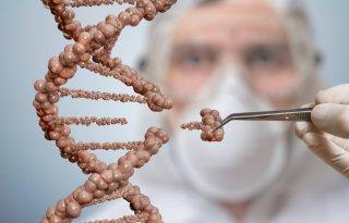Duitse kiezers tegen versoepeling gentechnologie