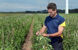 Berry Briljant-voorzitter: \'Bijzondere cross-over in zachtfruitsector\'