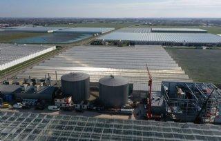 Uitfaseren biomassa blijkt lastiger dan gedacht