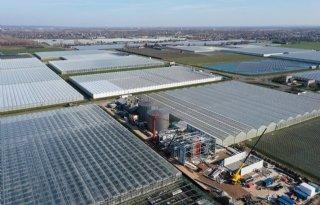 Glastuinbouw+Nederland%3A+wissels+goed+zetten+voor+klimaatneutrale+sector