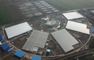 Nederlands bedrijf zet groenteteelt op in Chinees kassencomplex