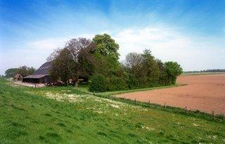 Directeur Brabants Landschap: 'Sleutel tot natuurherstel ligt op boerenland'