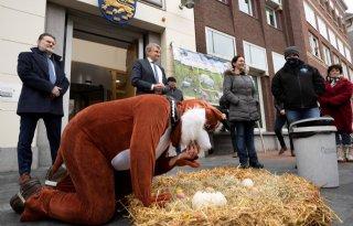 Friese+boeren+voeren+actie+tegen+verscherpt+weidevogelplan