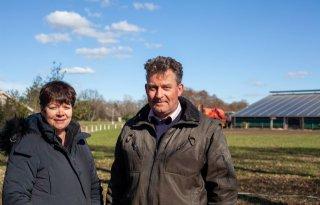 Duitse overheid zegt varkenshouders steun toe